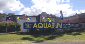 Fantasea Aquariums West Gosford